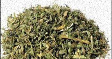 مكافحة المخدرات تضبط عاطل قبل ترويجه كيلو ونصف من مخدر الفودو بعين شمس